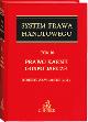 Książka Prawo karne gospodarcze. Tom 10 w ksiegarnia-wrzeszcz.pl